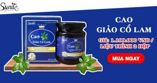 Cao giảo cổ lam hỗ trợ giảm đường huyết, giảm mỡ máu hiệu quả