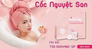 Cốc nguyệt san Lincup xóa tan nỗi lo ngày đèn đỏ