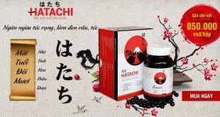 Hatachi plus hỗ trợ điều trị bạc tóc sớm, rụng tóc