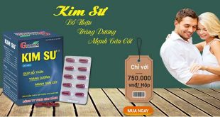Kim sư bổ thận, tráng dương, mạnh gân cốt