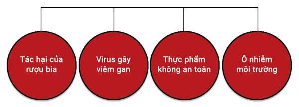 Nguyên nhân bệnh gan