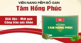Thuốc bổ gan Tâm Hồng Phúc bảo vệ và tăng cường chức năng gan