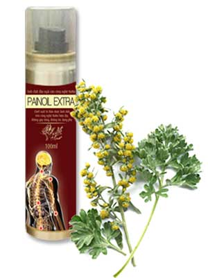 Tinh dầu ngải cứu Pain Oil Extra giảm đau xương khớp