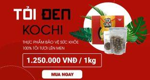 Tỏi đen Kochi nhật bản thực phẩm bảo vệ sức khỏe