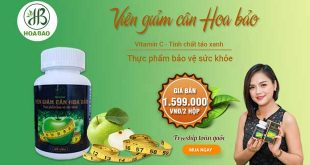 Viên giảm cân Hoa Bảo hỗ trợ giảm cân, hạ mỡ máu